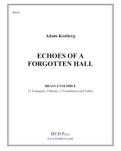 Echoes of a Forgotten Hall