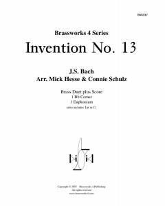 Invention No.13