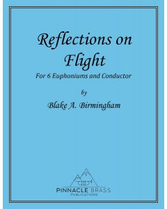 Downloadable - Reflections in Flight