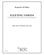 Fleeting Visions